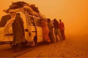 sandstorm_gallery.jpg